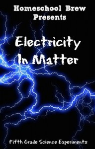Baixar Electricity in matter pdf, epub, eBook