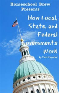 Baixar How local, state, and federal governments work pdf, epub, eBook