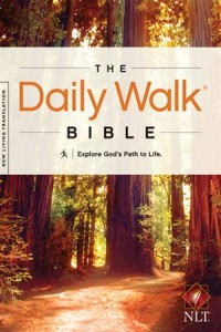 Baixar Daily walk bible nlt, the pdf, epub, ebook