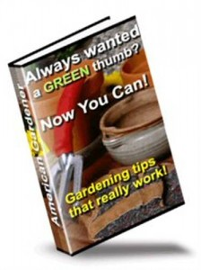 Baixar American gardener pdf, epub, eBook