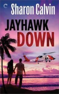 Baixar Jayhawk down pdf, epub, eBook