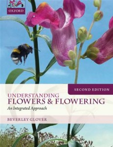 Baixar Understanding flowers and flowering second pdf, epub, eBook