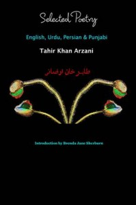 Baixar Selected poetry english, urdu, persian & pdf, epub, eBook
