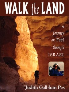 Baixar Walk the land pdf, epub, eBook