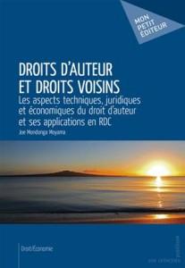 Baixar Droits d'auteur et droits voisins pdf, epub, eBook