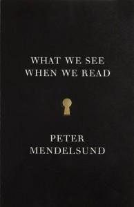 Baixar What we see when we read pdf, epub, eBook