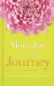 Baixar More joy for the journey pdf, epub, ebook