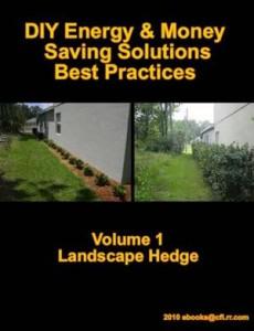 Baixar Diy energy & money saving solutions: best pdf, epub, ebook