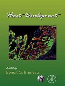 Baixar Heart development pdf, epub, eBook