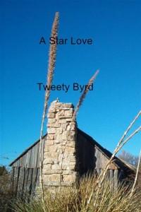 Baixar Star love, a pdf, epub, eBook