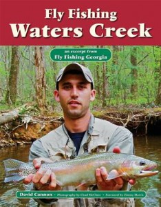 Baixar Fly fishing waters creek pdf, epub, eBook