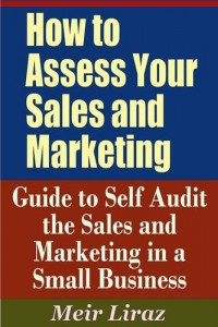 Baixar How to assess your sales and marketing: guide to pdf, epub, ebook