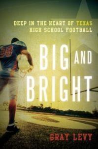 Baixar Big and bright pdf, epub, eBook