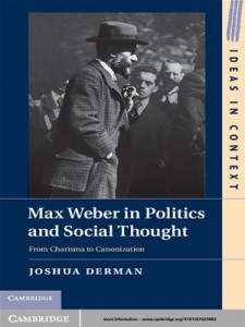 Baixar Max weber in politics and social thought pdf, epub, eBook