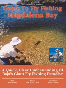 Baixar Guide to fly fishing magdalena bay pdf, epub, eBook