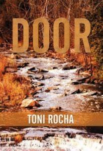 Baixar Door pdf, epub, ebook