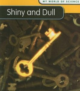 Baixar Shiny and dull pdf, epub, eBook