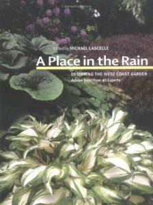 Baixar Place in the rain, a pdf, epub, ebook