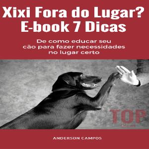 Baixar E-book 7 Dicas para xixi no lugar certo pdf, epub, eBook