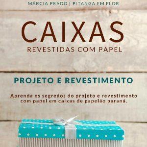 Baixar Caixas Revestidas com Papel pdf, epub, ebook