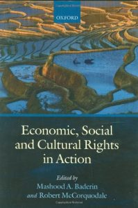 Baixar Economic, social and cultural rights in action pdf, epub, ebook