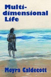 Baixar Multi-dimensional life pdf, epub, ebook