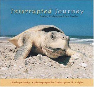 Baixar Interrupted journey – saving endangered sea turtle pdf, epub, eBook