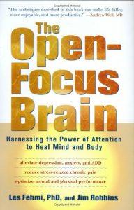 Baixar Open-focus brain, the pdf, epub, ebook