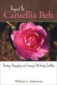 Baixar Beyond the camellia belt pdf, epub, ebook