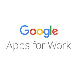 Baixar Google Apps for Work pdf, epub, ebook