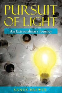 Baixar Pursuit of light pdf, epub, eBook