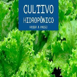 Baixar Hidroponia: cultivo hidroponico pdf, epub, eBook