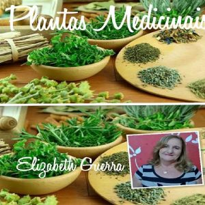 Baixar Plantas Medicinais pdf, epub, eBook