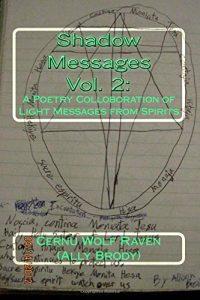 Baixar Shadow messages pdf, epub, ebook