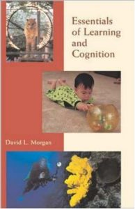 Baixar Essentials of learning and cognition pdf, epub, eBook
