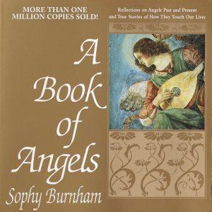 Baixar Book of angels pdf, epub, eBook