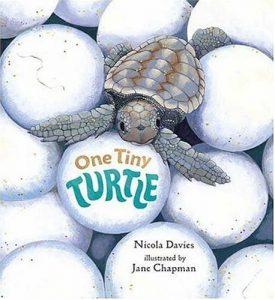 Baixar One tiny turtle pdf, epub, eBook