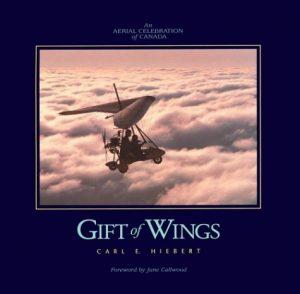 Baixar Gift of wings pdf, epub, ebook