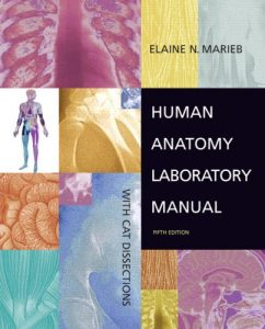 Baixar Human anatomy lab manual with cat dissections pdf, epub, ebook