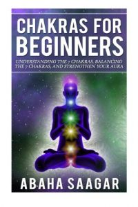 Baixar Chakras for beginners pdf, epub, ebook
