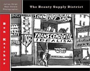 Baixar Julius knipl, real estate photographer/ the beauty pdf, epub, eBook