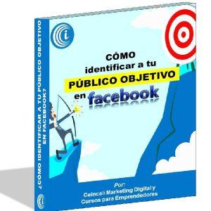 Baixar EBOOK: ¿Cómo identificar a tu público objetivo en facebook? pdf, epub, ebook