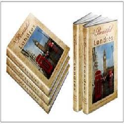 Baixar LONDRES: AMOR E ÓDIO pdf, epub, ebook