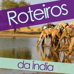 Baixar Roteiros da Índia pdf, epub, ebook