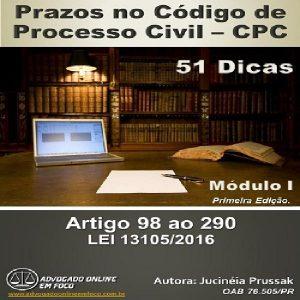 Baixar 51 Dicas sobre Prazos no Código de Processo Civil -Módulo 1 pdf, epub, ebook