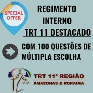 Baixar REGIMENTO INTERNO TRT 11 DESTACADO – 100 QUESTÕES MÚLTIPLA ESCOLHA pdf, epub, ebook