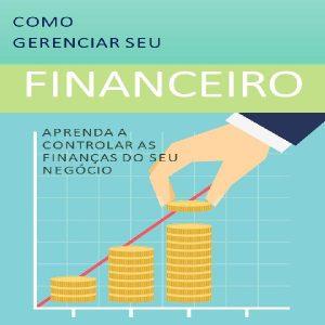 Baixar E-book Gestão Financeira pdf, epub, ebook