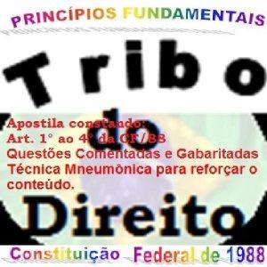 Baixar DIREITO_Princípios Fundamentais da CF/88_ pdf pdf, epub, ebook