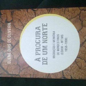 Baixar E-book À Procura de um Norte: Migração e Memória de Nordestinos pdf, epub, ebook