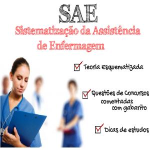Baixar Sistematização da Assistência de Enfermagem (SAE) – Teoria e Questões Comentadas pdf, epub, ebook